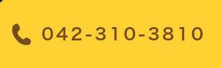 042-310-3810
